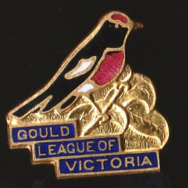 1974 Gould League of Victoria Red-Capped Robin Badge Pin Xa
