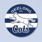 2012 Geelong Cats AFL First 18 Trofe Pin Badge