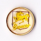 1995 Brisbane Broncos ARL Logo Bensons Pin Badge