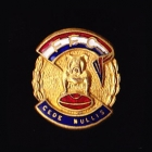 1960s Footscray Bulldogs VFL Football Club Pin Badge