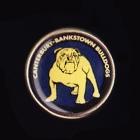 1992 Canterbury Bankstown Bulldogs NSWRL Billy Tea Pin Badge