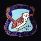 1938 Gould League of Bird Lovers Victoria Kookaburra Badge Pin LWNc