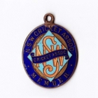 1950s NSW Cricket Association Member Badge