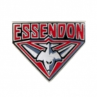2011 Essendon Bombers AFL Logo Trofe Pin Badge