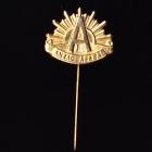 Anzac Day Stick Pin