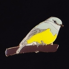 2011 BirdLife WA Western Yellow Robin Pin Badge