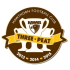2015 Hawthorn Hawks AFL Premiers Triple Peat Pin Badge b