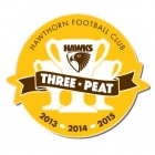 2015 Hawthorn Hawks AFL Premiers Triple Peat Pin Badge y