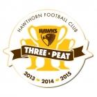 2015 Hawthorn Hawks AFL Premiers Triple Peat Pin Badge w