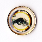 1995 Penrith Panthers ARL Logo Bensons Pin Badge