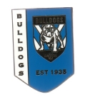 2017 Sydney Roosters NRL Logo Trofe Pin Badge