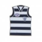 2011 Geelong Cats AFL Jersey Trofe Pin Badge