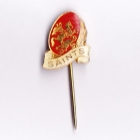 1967 St George Dragons NSWRL The Sun Pin Badge