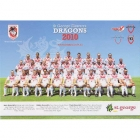 2010 St George Illawarra Dragons NRL Team Poster