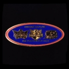 2010 NRL Preliminary Final Titans v Roosters Pin Badge r