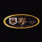 2010 NRL Preliminary Final Dragons v Tigers Pin Badge t